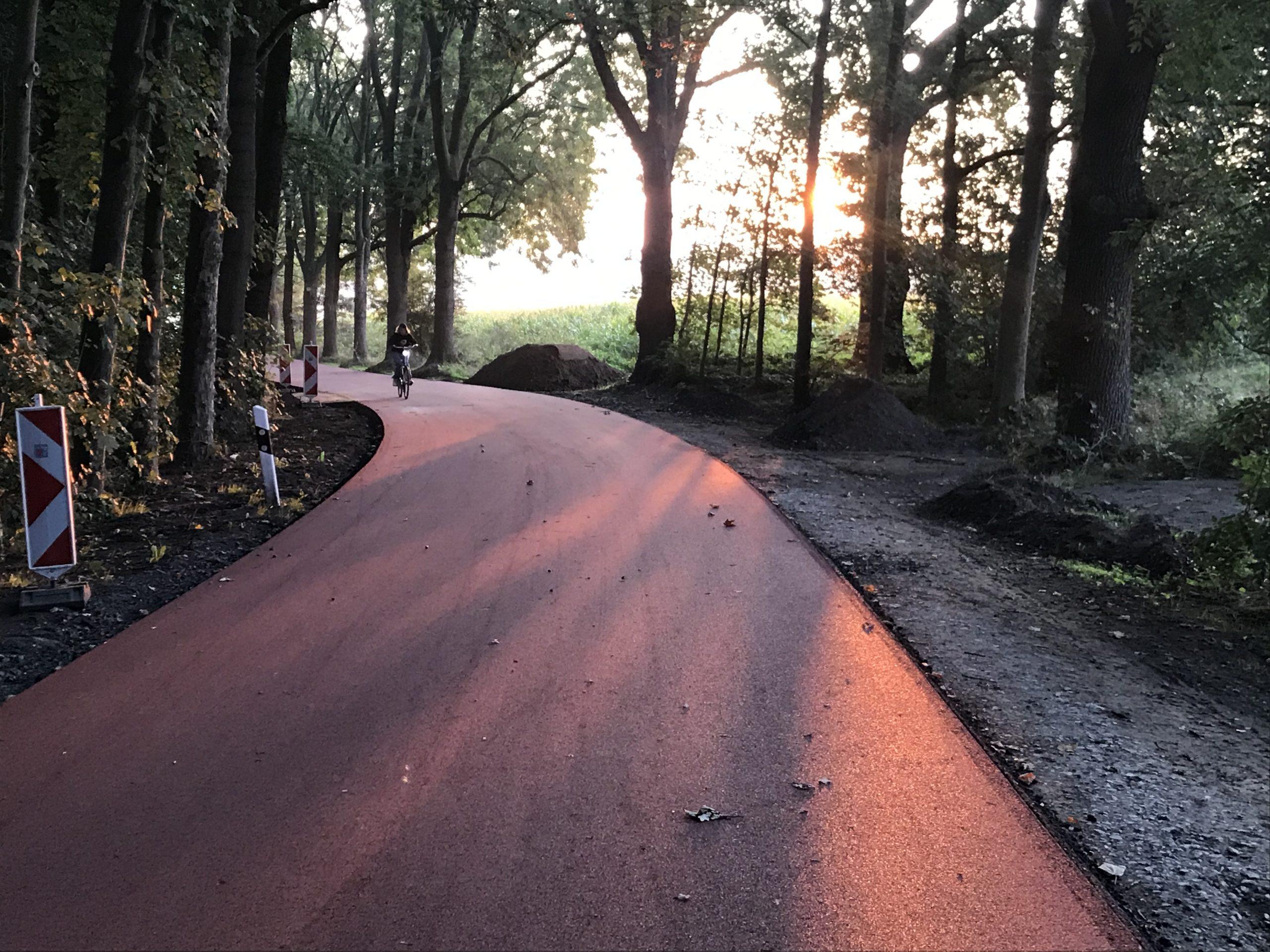 Ein Fahrradfahrer kommt auf einem Fahrradweg, der durch ein Waldstück führt entgegen.